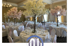 Blossom-tree-hire-1-wedding-party-hire-in-liverpool-warrington-wirral-widness-cheshire-lancashire-and-north-wales