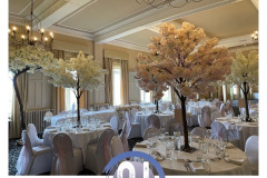blossom-tree-and-venue-dressing-hire-wedding-party-hire-in-liverpool-warrington-wirral-widness-cheshire-lancashire-and-north-wales
