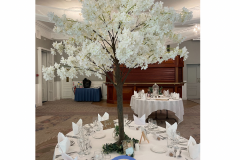 blossom-tree-hire-for-tables-wedding-party-hire-in-liverpool-warrington-wirral-widness-cheshire-lancashire-and-north-wales