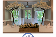 floral-displays-blossom-canopy-trees-in-wedding-party-hire-in-liverpool-warrington-wirral-widness-cheshire-lancashire-and-north-wales.