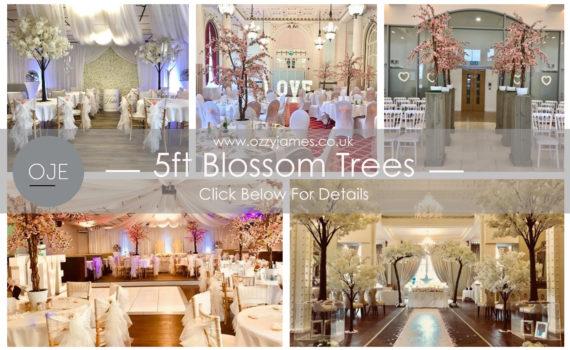 blossom tree hire liverpool, wedding blossom tree hire
