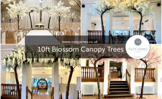 Wedding Ceremony Blossom Trees For Hire In Liverpool, Wirral, Warrington, Widnes, Preston, Cheshire - Ozzy James Events
