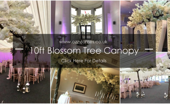 10ft blossom tree canopy hire northwest