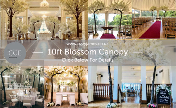 Blossom Canopy Tree Hire, Baby Shower Blossom Tree Hire, Wedding Ceremony Blossom Tree Hire Merseyside